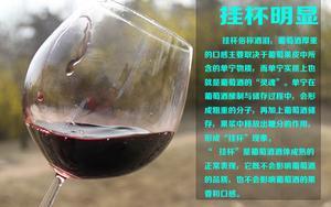 无添加剂野生原汁甜葡萄红酒
