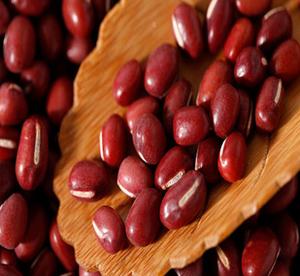 现货红豆 厂家直供 超低价格 精品红豆