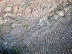 主动边坡防护网,主动防护网
