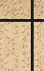 浙江金华水包水多彩涂料 金华水包水多彩涂料厂家直销 工程施工