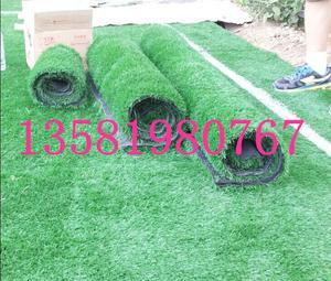 北京假草坪厂家直销人造草坪幼儿园加密草坪价格