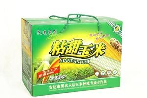 黑龙江省 黑农人粘玉米 东北特产粘甜玉米包邮