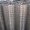 镀锌电焊网防护围栏养殖保温建筑笼子网铁丝网