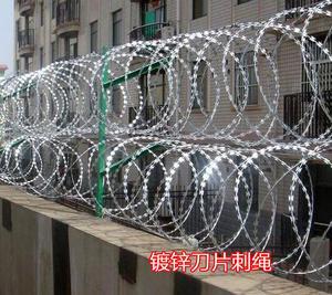 刺绳铁蒺藜防爬刺防盗网 刺网带刺铁丝 公路防护网