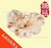 山东省永腾食用菌榆耳 一级榆耳批发销售