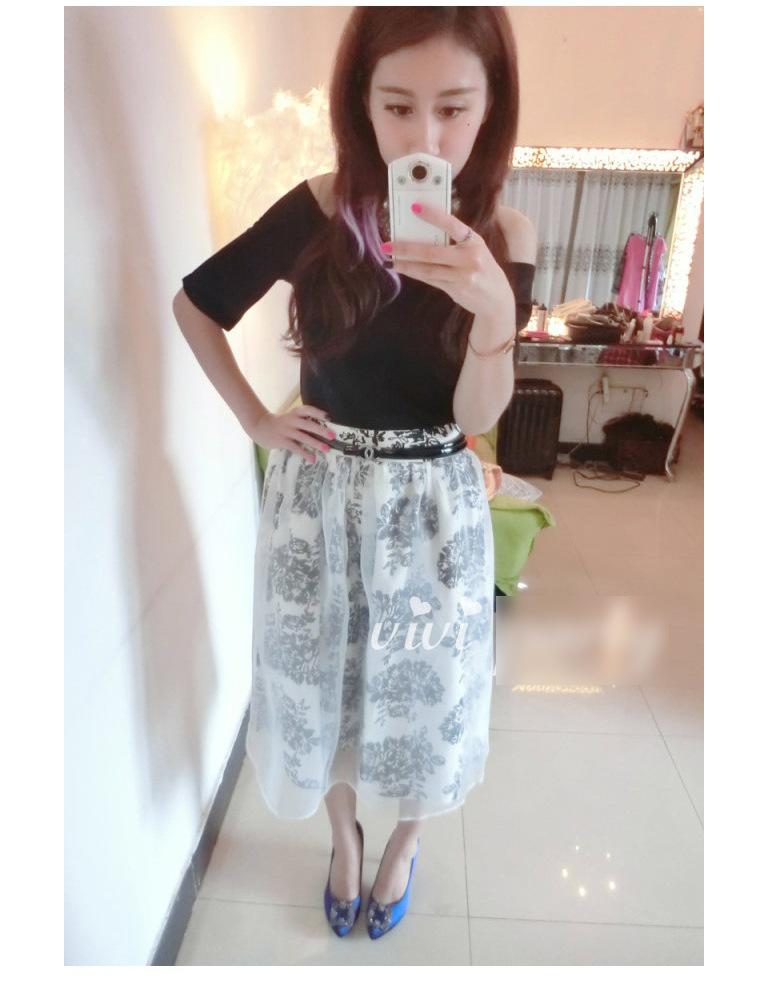 2014韩版欧根纱连衣裙 夏季女装新款两件套短袖裙子B353图片三