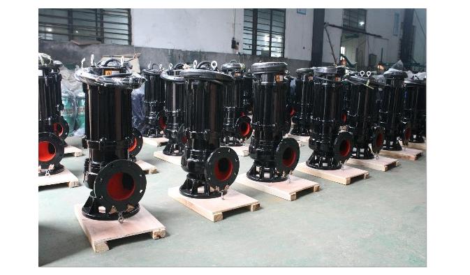 5.5KW切割式排污泵图片四