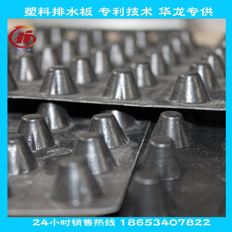750克凸高0.8cm塑料排水板生产厂家图片二