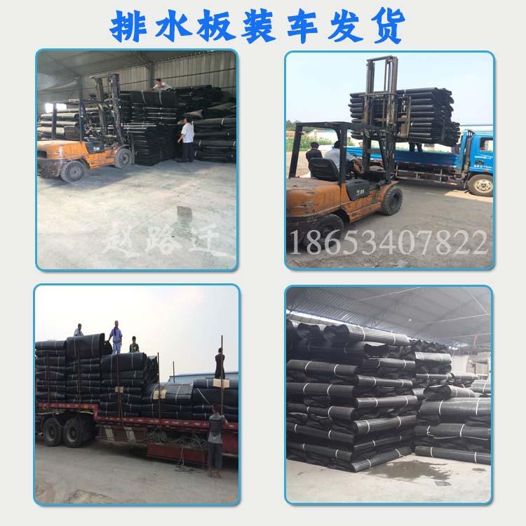 750克凸高0.8cm塑料排水板生产厂家图片五