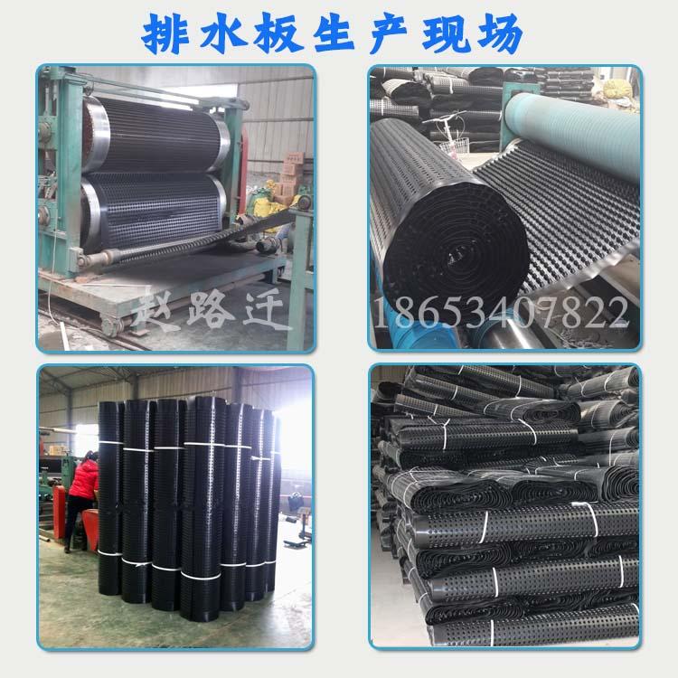 750克凸高0.8cm塑料排水板生产厂家图片三