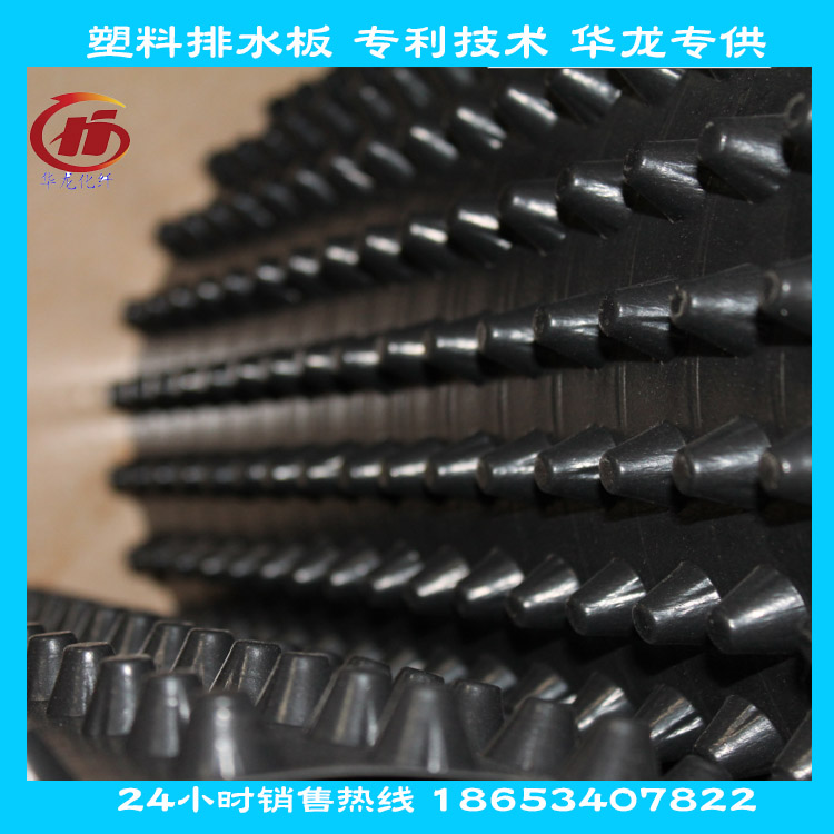 供应黑色HDPE排水板 华南地区专供图片二