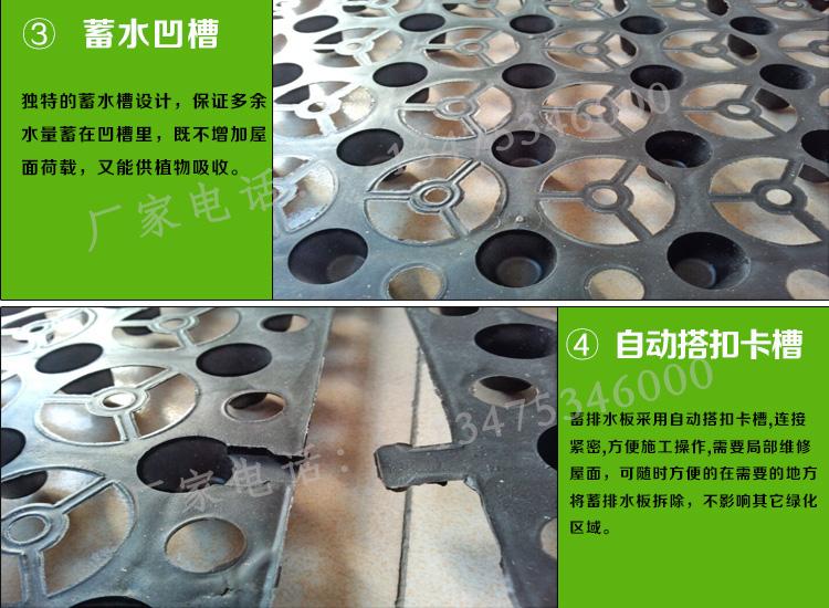HDPE塑料蓄排水板图片三