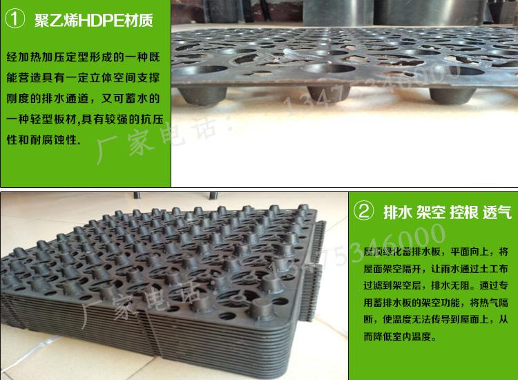 HDPE塑料蓄排水板图片二