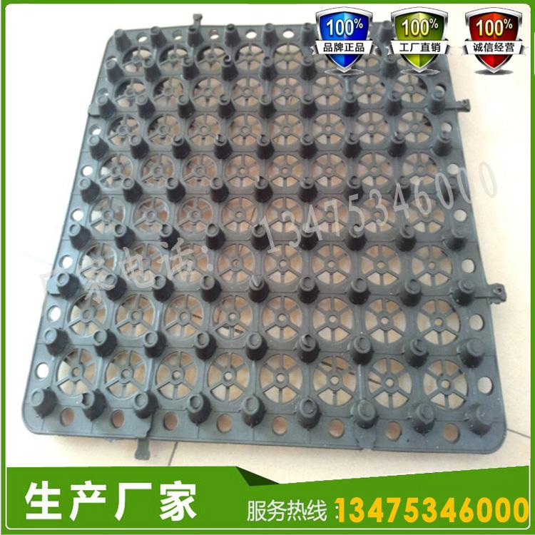 HDPE塑料蓄排水板图片五