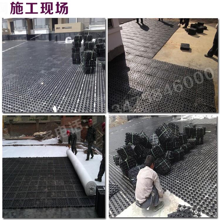 HDPE塑料蓄排水板图片十