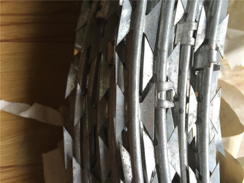 河北龙圣 监狱用刀片刺绳图片一