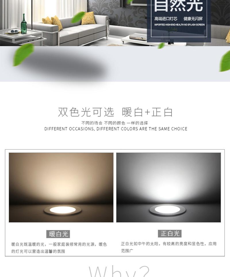 胜翔照明 筒灯6寸+LED节能灯24W 特价组合图片三