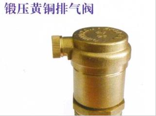 中南铜业—锻压黄铜排气阀图片一