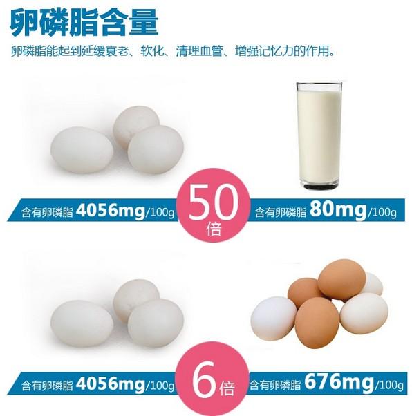 广西北部湾特产  轩妈咸熟海鸭蛋70g*50枚图片六