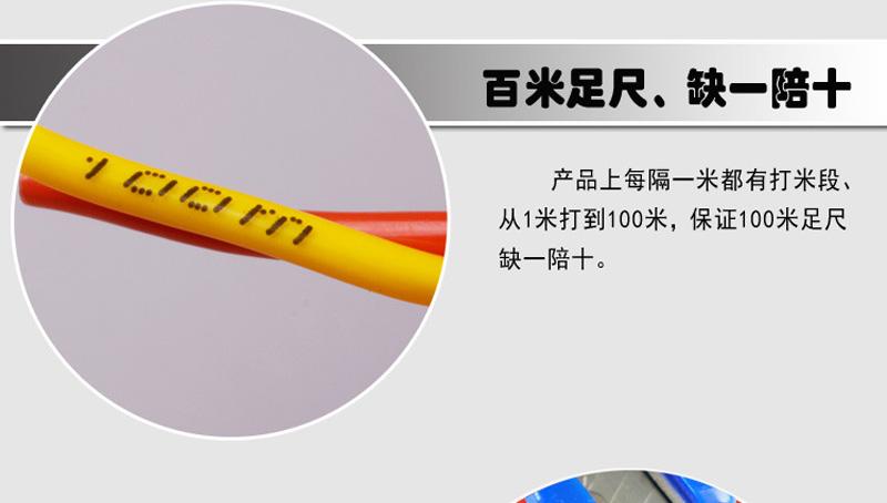 内彩外明RVS 铜包铝2X48丝胶质线 双绞线图片七