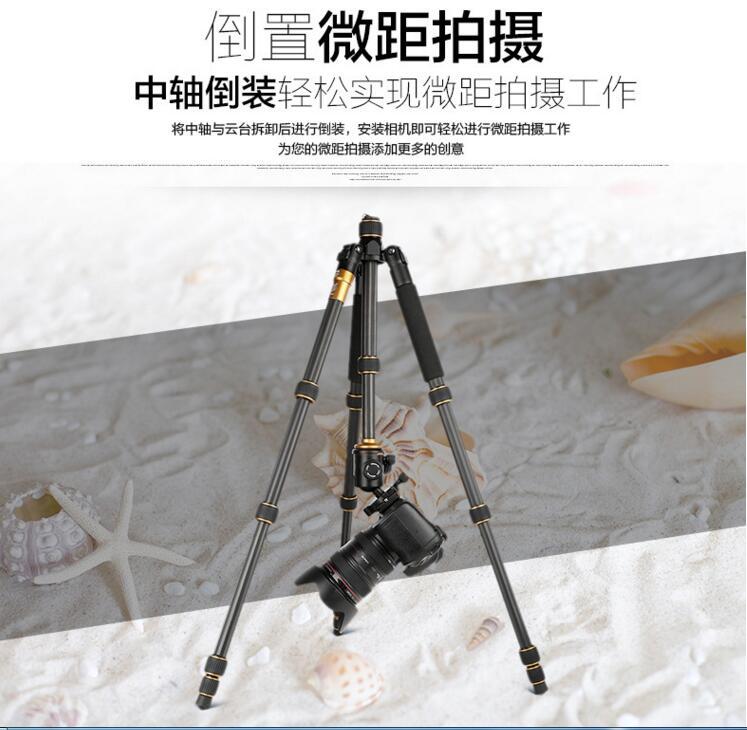 碳纤维三脚架 便携旅行摄影球型云台单反相机三角架图片五