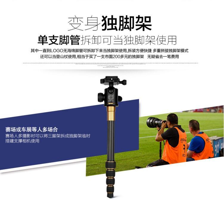 碳纤维三脚架 便携旅行摄影球型云台单反相机三角架图片四