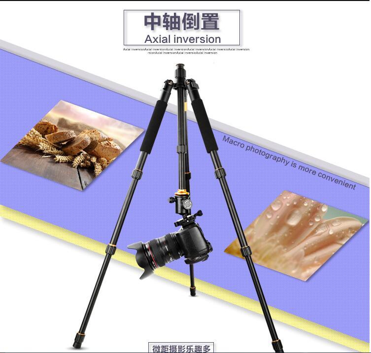 单反相机三脚架 便携摄影自拍照相迷你多功能三角架图片六