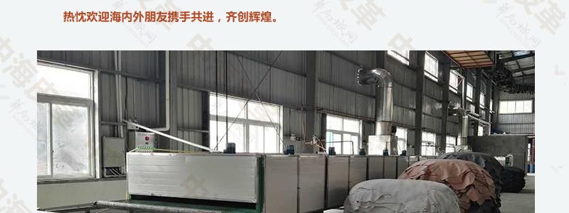 广东厂家批发头层牛皮、小荔枝、苹果表带纹路图片二十三