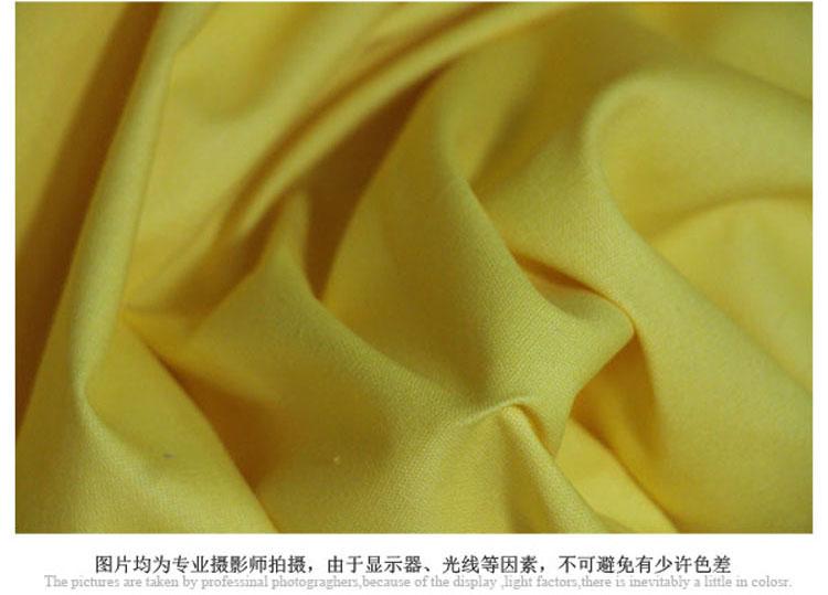 6安全棉全工艺染色帆布 手袋箱包面料 图片一