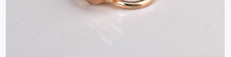 5#滚电尼龙拉头、圆圈(浅金色)图片三十七