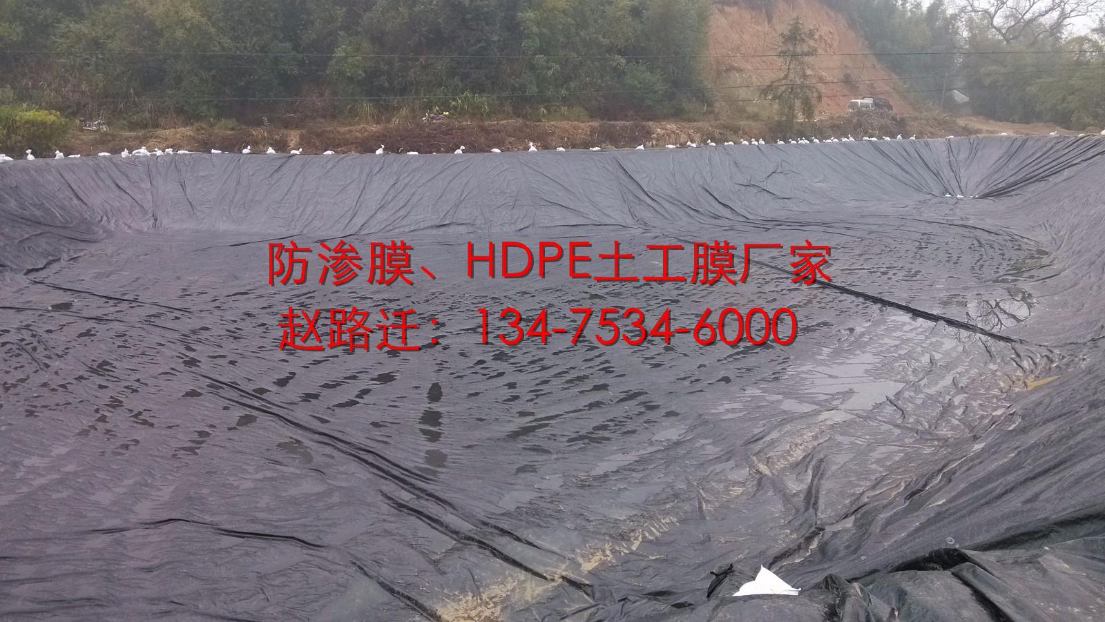 农业灌溉1.0mm蓄水池防渗膜图片十八