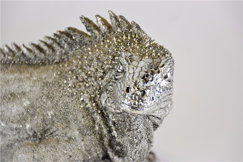 印尼 蜥蜴摆件 0202940图片十