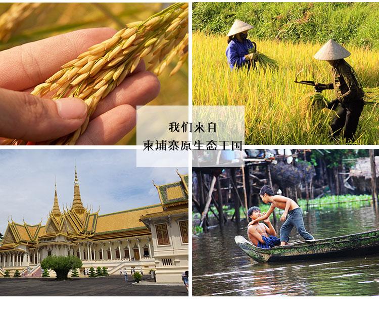 (特)柬埔寨 柬自然牌原生茉莉香米 0107359图片八