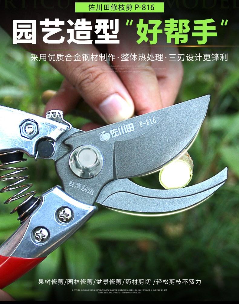 台湾佐川田 816 修枝剪刀 果树修剪工具 园林剪刀 树枝剪 园艺图片一