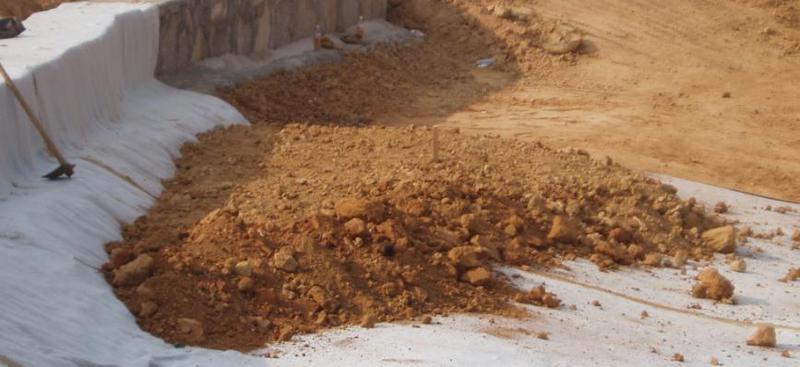 粘土动物相处的环境图片