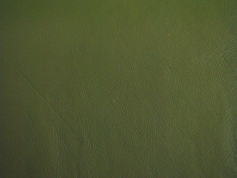 綠色綿羊服裝 - 綿羊皮批發,采購,供應 - 華南城網圖片