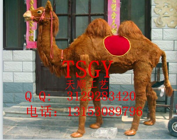 仿真骆驼模型动物公园照相馆影视拍摄道具
