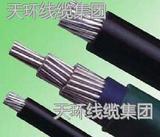绝缘架空电缆25²