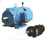 YEJ2系列电磁制动电动机