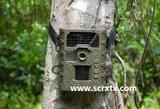 夜鹰红外感应自拍数码相机---夜鹰SG-008