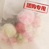 【团购】25g涤纶亲水无纺布1025S
