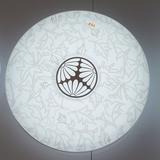 FSL佛山照明 LED吸顶灯 客厅灯 卧室灯 现代