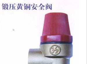 中南铜业—锻压黄铜安全阀