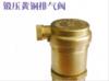 中南铜业—锻压黄铜排气阀