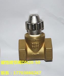 磁性调节阀DN50
