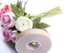 厂家直销定做批量生产 提花织带